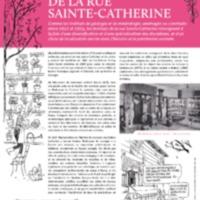 Les Instituts de la rue Sainte-Catherine